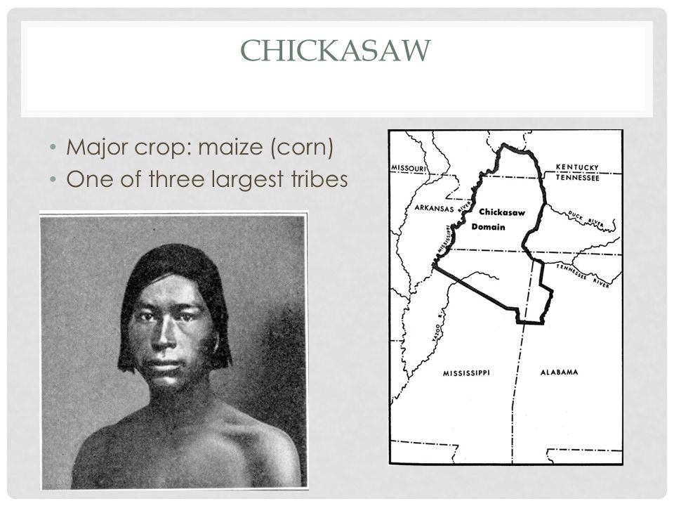 CHICKASAW Major crop: maize (corn) One of three largest tribes