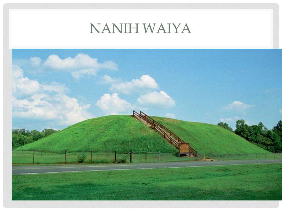 NANIH WAIYA
