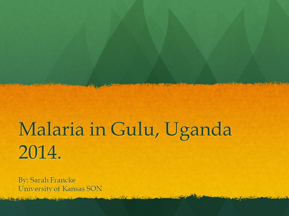Malaria in Gulu, Uganda 2014. By: Sarah Francke University of Kansas SON