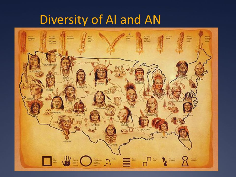 Diversity of AI and AN
