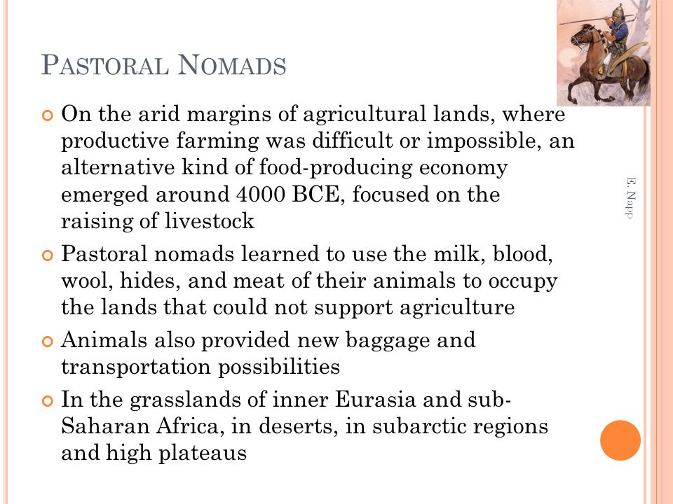 P ASTORAL N OMADS On the arid margins of agricultural lands, where productive farming was difficult or impossible, an alternative kind of food-produci