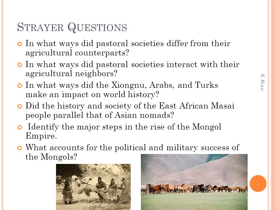 S TRAYER Q UESTIONS In what ways did pastoral societies differ from their agricultural counterparts? In what ways did pastoral societies interact with