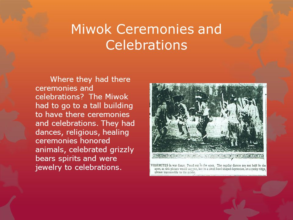 Miwok Ceremonies and Celebrations Where they had there ceremonies and celebrations? The Miwok had to go to a tall building to have there ceremonies an