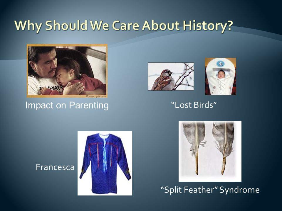 "Francesca ""Split Feather"" Syndrome ""Lost Birds"" Impact on Parenting"