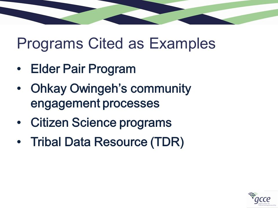Programs Cited as Examples