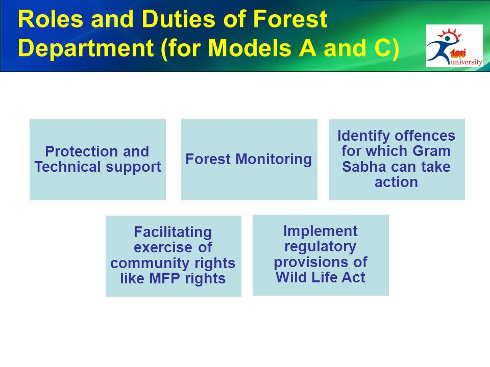 Roles and Duties of Forest Department (for Models A and C)