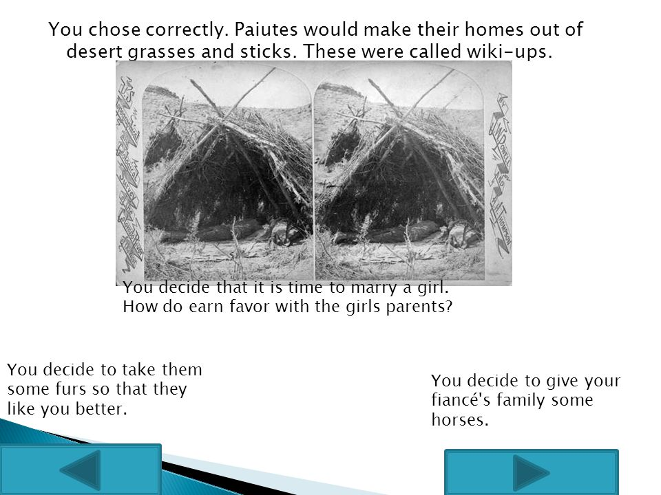 You chose correctly. Paiutes would make their homes out of desert grasses and sticks.