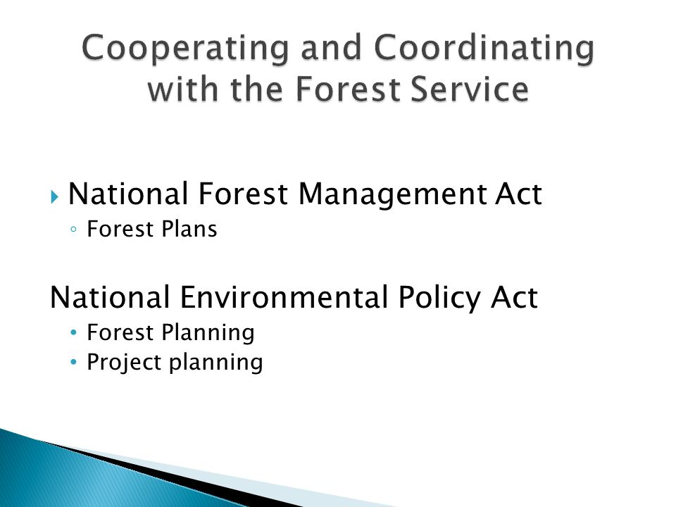 ◦ Forest Plans National Environmental Policy Act Forest Planning Project planning