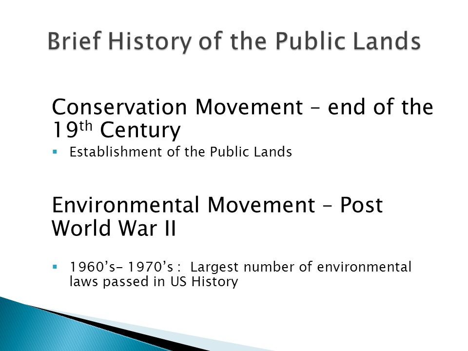 Conservation Movement – end of the 19 th Century  Establishment of the Public Lands Environmental Movement – Post World War II  1960's- 1970's : Largest number of environmental laws passed in US History