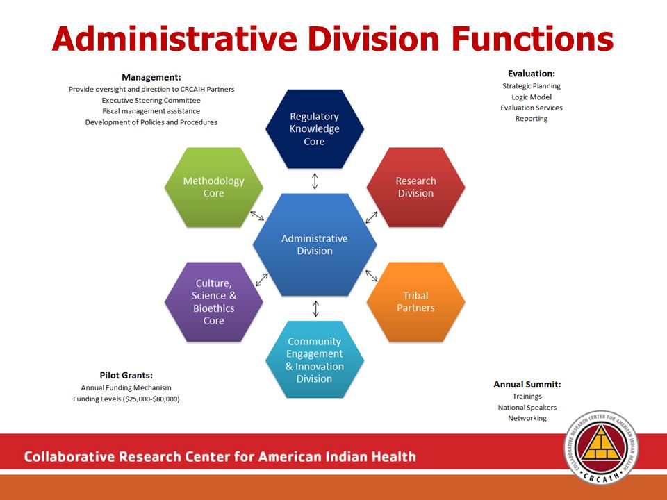 Administrative Division Service Examples Determination of pilot project & investigator eligibility Help frame study idea to mission/purpose of pilot grants Discussing emphasis of important elements of proposal Discussing response to reviewer feedback Assistance in designing research questions & hypotheses Budgeting; discuss scale of study design to fit budget Connecting interested investigators Designing logic models, strategic planning Support in development of evaluation plan and measures