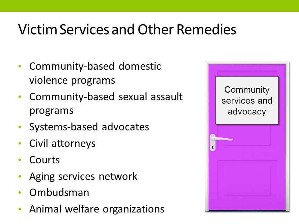 Community services and advocacy Community-based domestic violence programs Community-based sexual assault programs Systems-based advocates Civil attorneys Courts Aging services network Ombudsman Animal welfare organizations Victim Services and Other Remedies