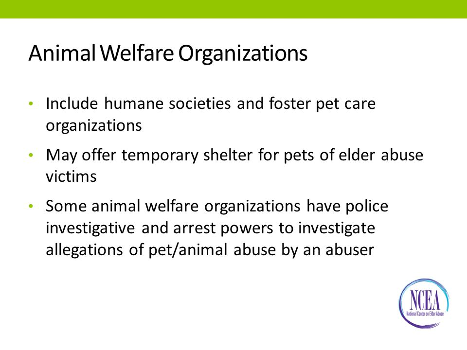 Animal Welfare Organizations Include humane societies and foster pet care organizations May offer temporary shelter for pets of elder abuse victims Some animal welfare organizations have police investigative and arrest powers to investigate allegations of pet/animal abuse by an abuser
