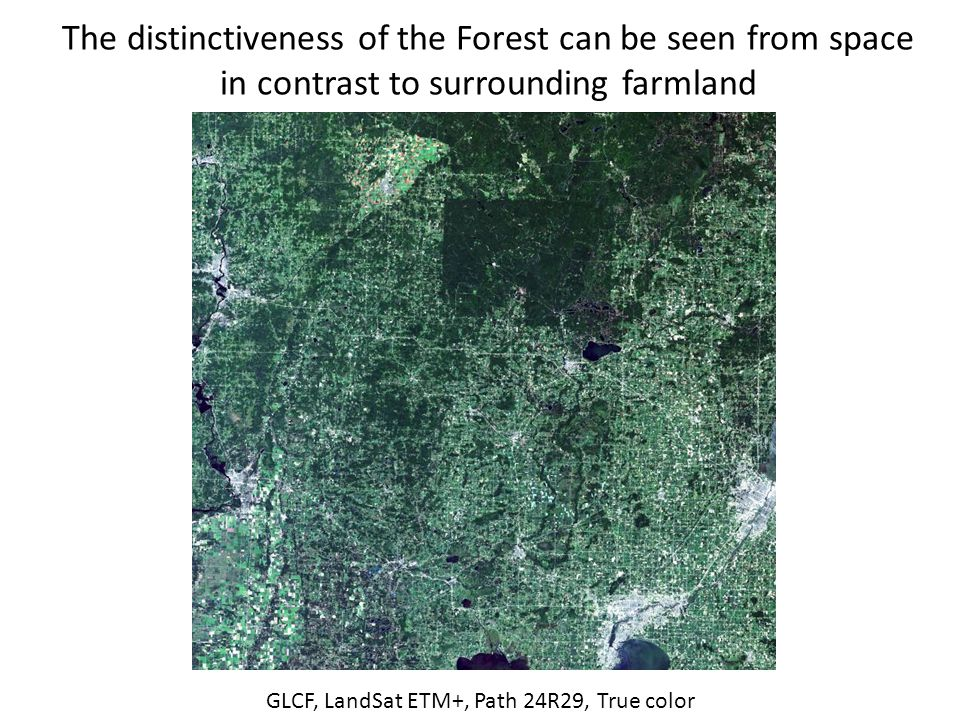 The distinctiveness of the Forest can be seen from space in contrast to surrounding farmland GLCF, LandSat ETM+, Path 24R29, True color