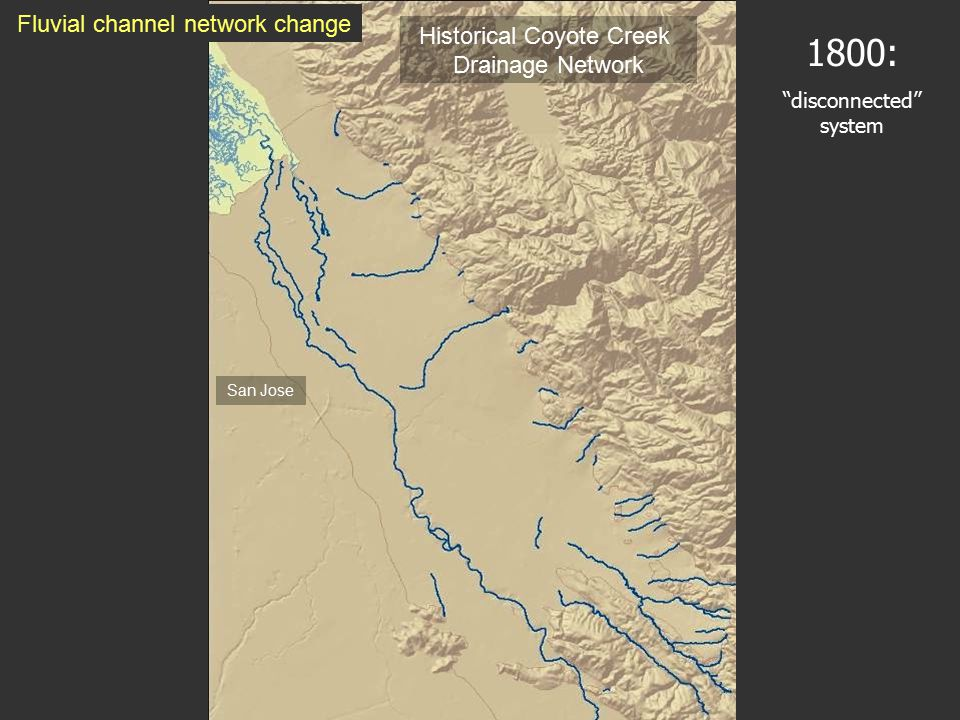 1800: disconnected system Historical Coyote Creek Drainage Network San Jose Fluvial channel network change