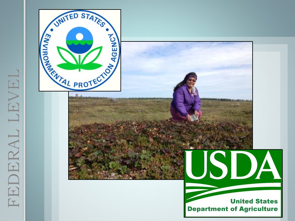 Sought a partnership with the City of Nome to help improve their Recycle Center BEFORE AFTER