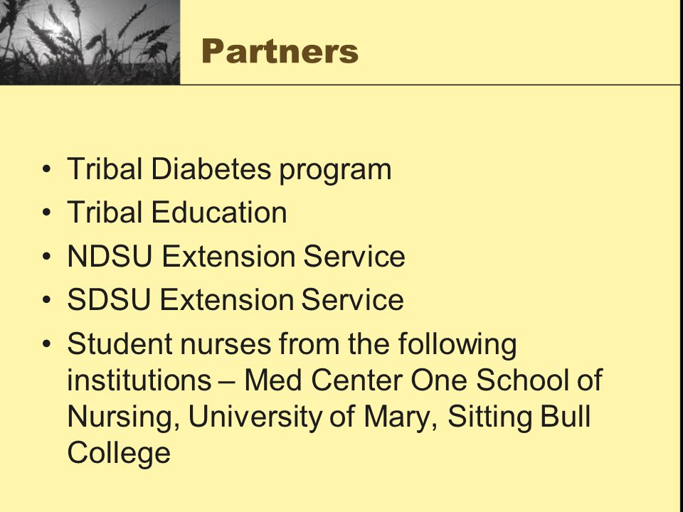 Partners Tribal Diabetes program Tribal Education NDSU Extension Service SDSU Extension Service Student nurses from the following institutions – Med Center One School of Nursing, University of Mary, Sitting Bull College