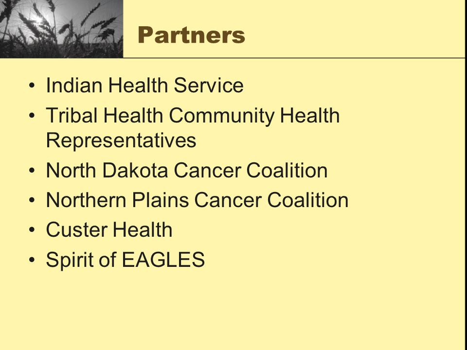 Partners Indian Health Service Tribal Health Community Health Representatives North Dakota Cancer Coalition Northern Plains Cancer Coalition Custer Health Spirit of EAGLES