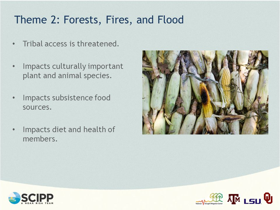 Theme 2: Forests, Fires, and Flood Tribal access is threatened.