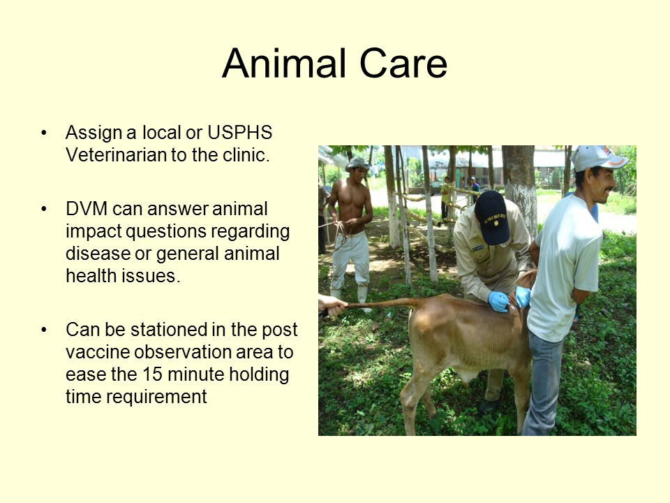 Animal Care Assign a local or USPHS Veterinarian to the clinic.