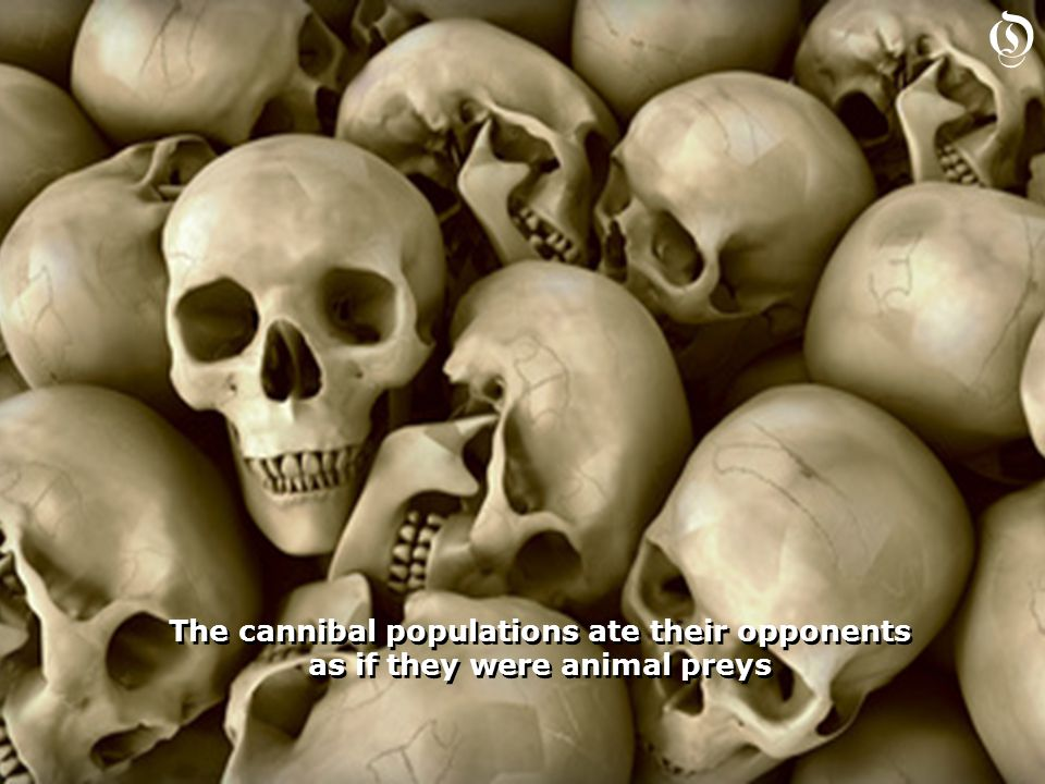 The cannibal populations ate their opponents as if they were animal preys The cannibal populations ate their opponents as if they were animal preys O