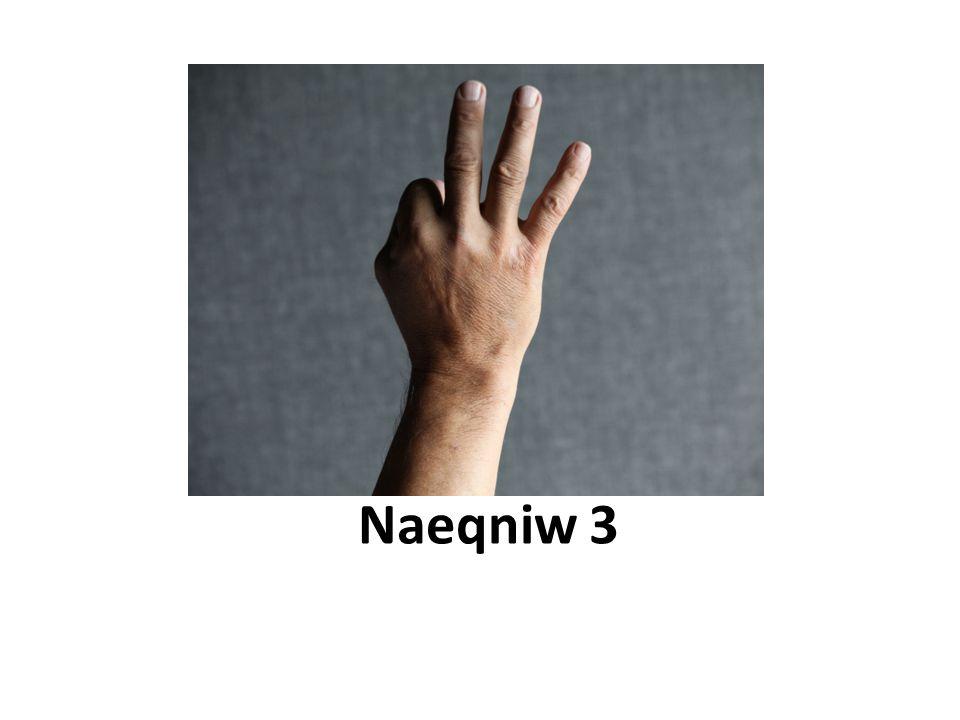 Naeqniw 3