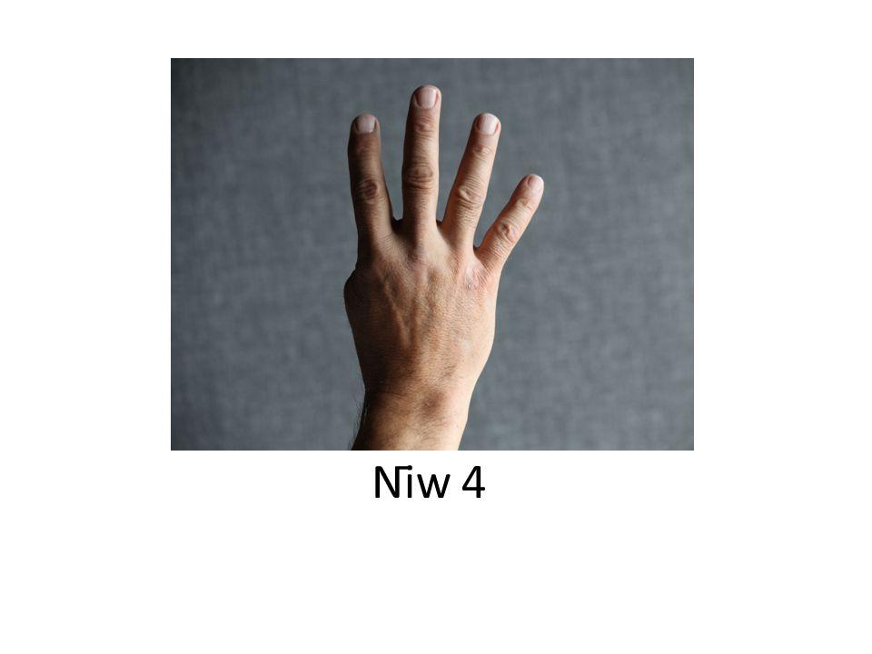Nīw 4