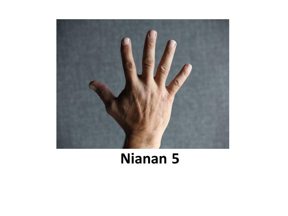 Nianan 5
