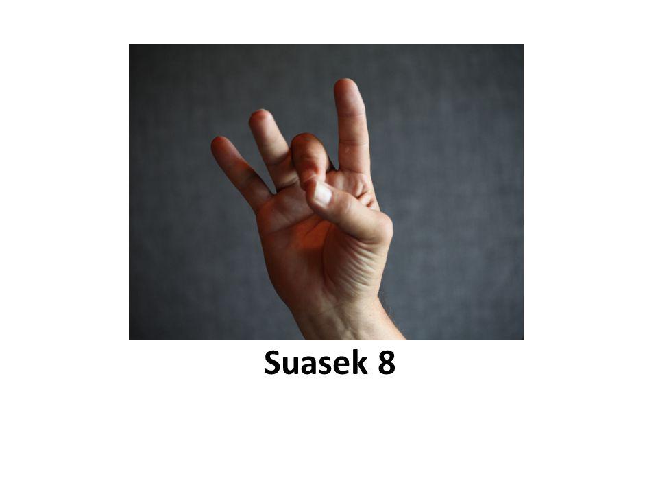 Suasek 8