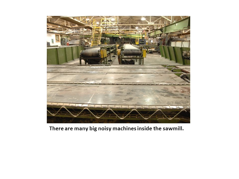 There are many big noisy machines inside the sawmill.