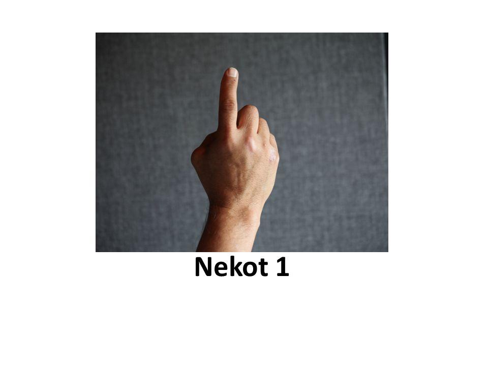 Nekot 1