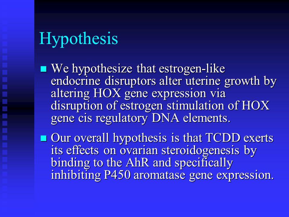 Hypothesis We hypothesize that estrogen-like endocrine disruptors alter uterine growth by altering HOX gene expression via disruption of estrogen stimulation of HOX gene cis regulatory DNA elements.