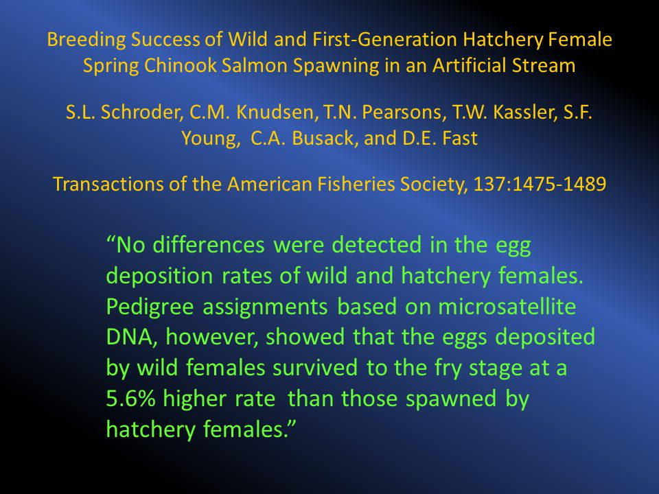 Breeding Success of Wild and First-Generation Hatchery Female Spring Chinook Salmon Spawning in an Artificial Stream S.L. Schroder, C.M. Knudsen, T.N.