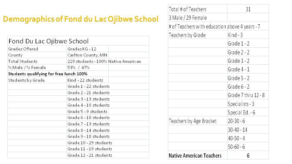 Demographics of Fond du Lac Ojibwe School