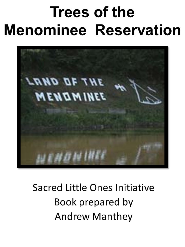 Sacred Little Ones Initiative Book prepared by Andrew Manthey Trees of the Menominee Reservation