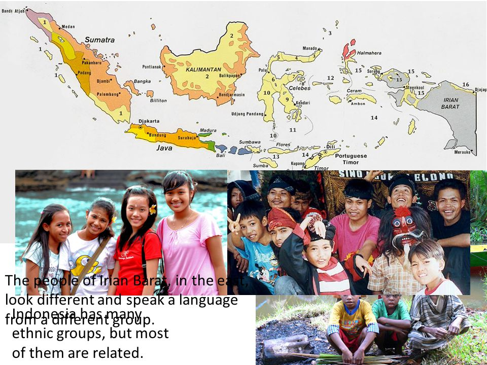 Indonesia has many ethnic groups, but most of them are related.