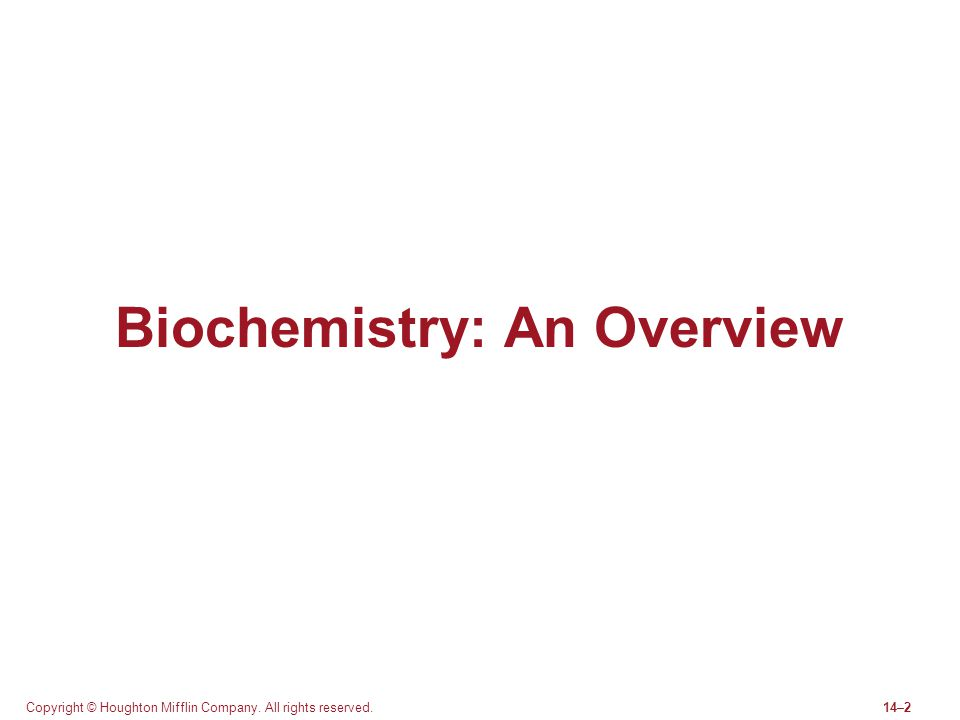 Copyright © Houghton Mifflin Company. All rights reserved.14–2 Biochemistry: An Overview