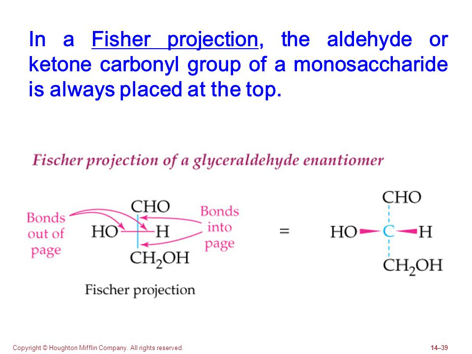 Copyright © Houghton Mifflin Company. All rights reserved.14–39 In a Fisher projection, the aldehyde or ketone carbonyl group of a monosaccharide is a