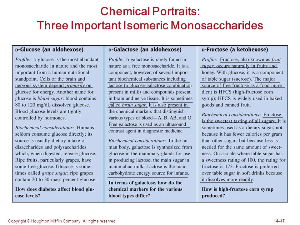 Copyright © Houghton Mifflin Company. All rights reserved.14–47 Chemical Portraits: Three Important Isomeric Monosaccharides