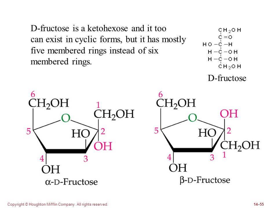 Copyright © Houghton Mifflin Company. All rights reserved.14–55 D-fructose D-fructose is a ketohexose and it too can exist in cyclic forms, but it has
