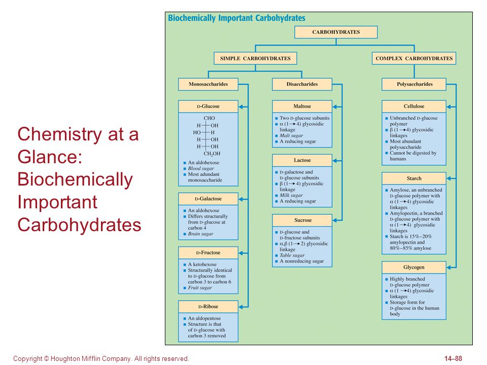 Copyright © Houghton Mifflin Company. All rights reserved.14–88 Chemistry at a Glance: Biochemically Important Carbohydrates