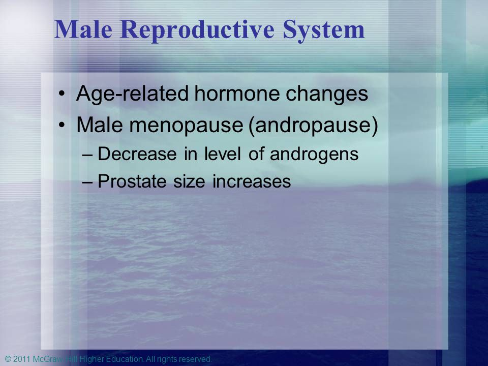 © 2011 McGraw-Hill Higher Education. All rights reserved. Male Reproductive System Age-related hormone changes Male menopause (andropause) –Decrease i