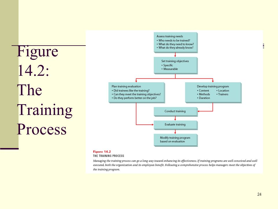 24 Figure 14.2: The Training Process