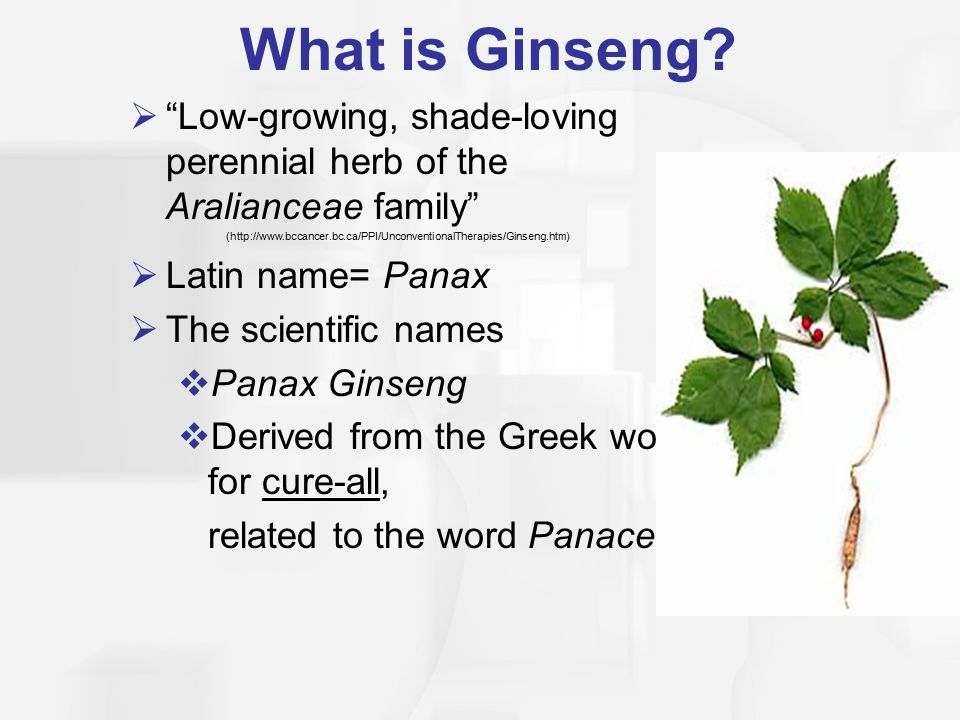 What is Ginseng.