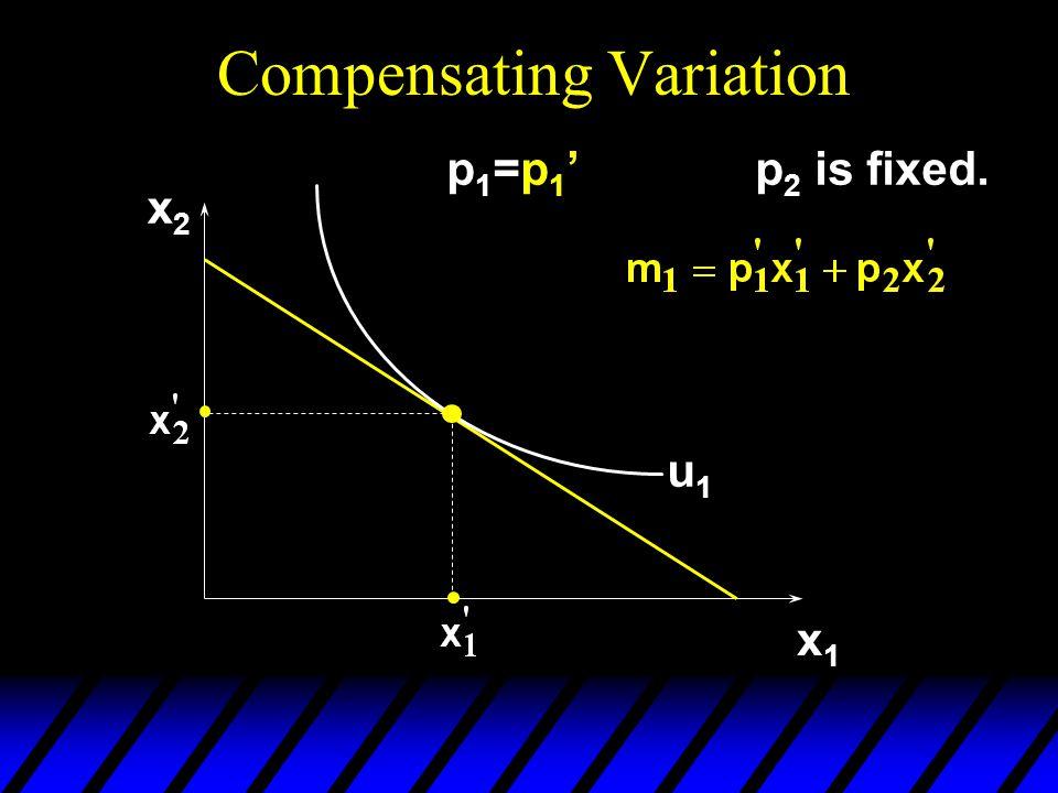 x2x2 x1x1 u1u1 p1=p1'p1=p1'p 2 is fixed.