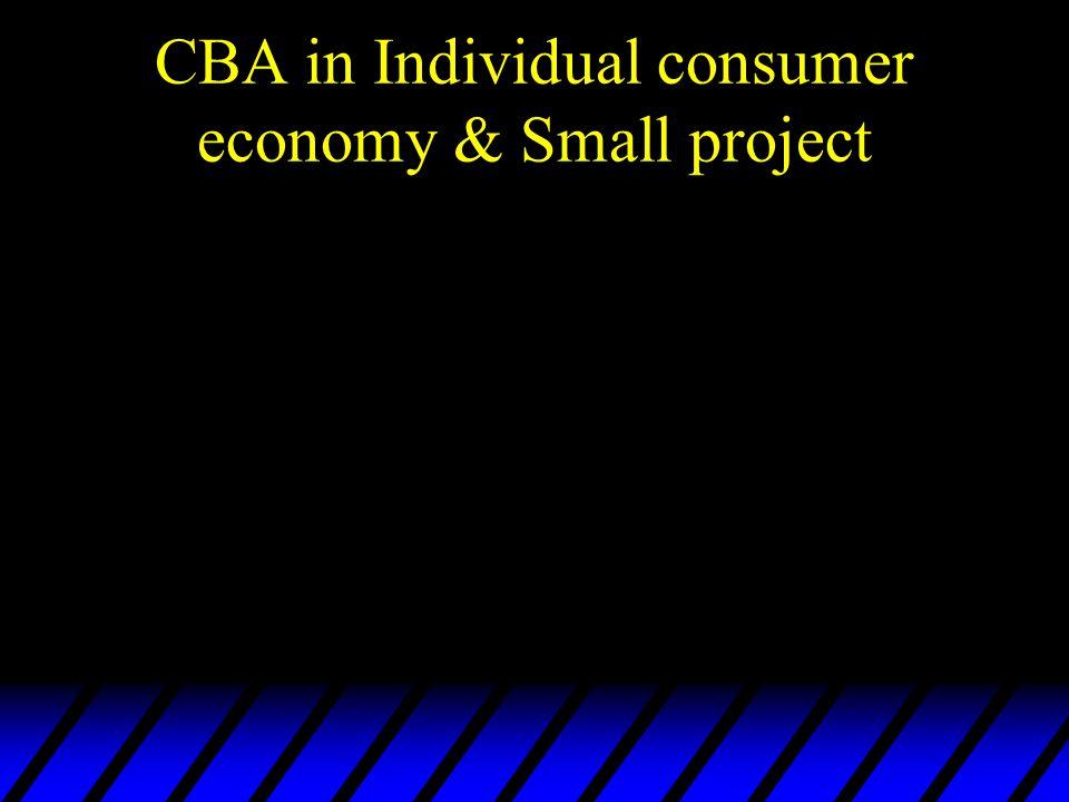 CBA in Individual consumer economy & Small project
