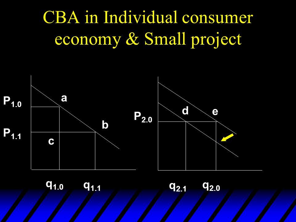 CBA in Individual consumer economy & Small project P 1.0 P 1.1 P 2.0 q 1.0 q 1.1 q 2.1 q 2.0 d e a b c
