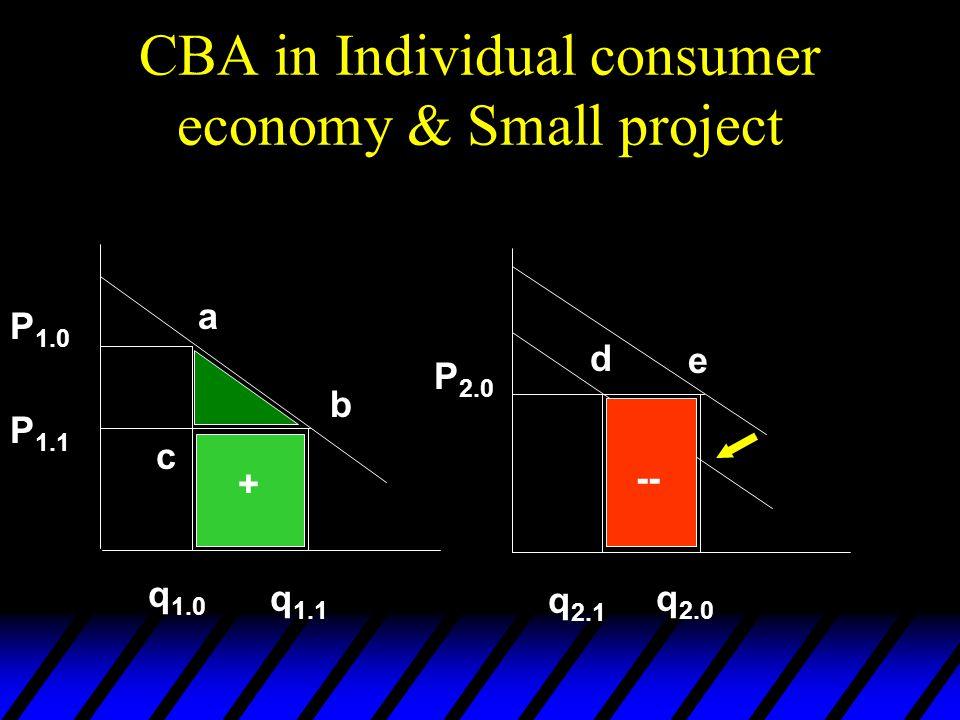 CBA in Individual consumer economy & Small project P 1.0 P 1.1 P 2.0 q 1.0 q 1.1 q 2.1 q 2.0 d e a b c + --