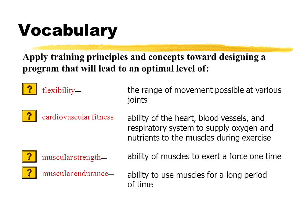 Vocabulary the range of movement possible at various joints ability of the heart, blood vessels, and respiratory system to supply oxygen and nutrients to the muscles during exercise ability of muscles to exert a force one time ability to use muscles for a long period of time Apply training principles and concepts toward designing a program that will lead to an optimal level of: flexibility — cardiovascular fitness — muscular strength — muscular endurance —