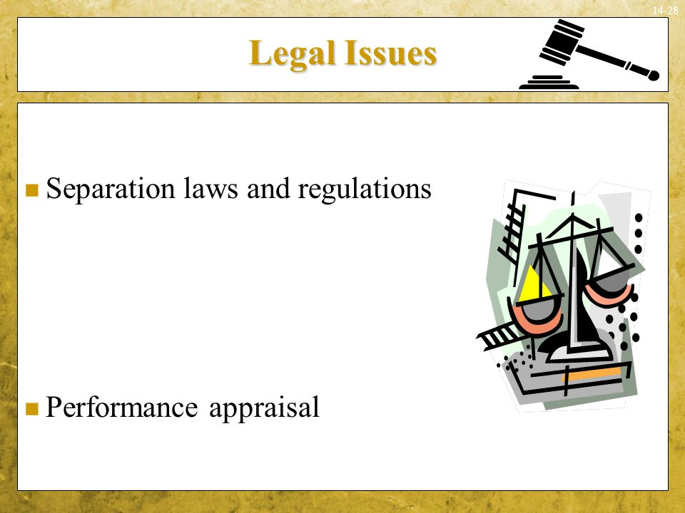 14-28 Legal Issues Separation laws and regulations Performance appraisal