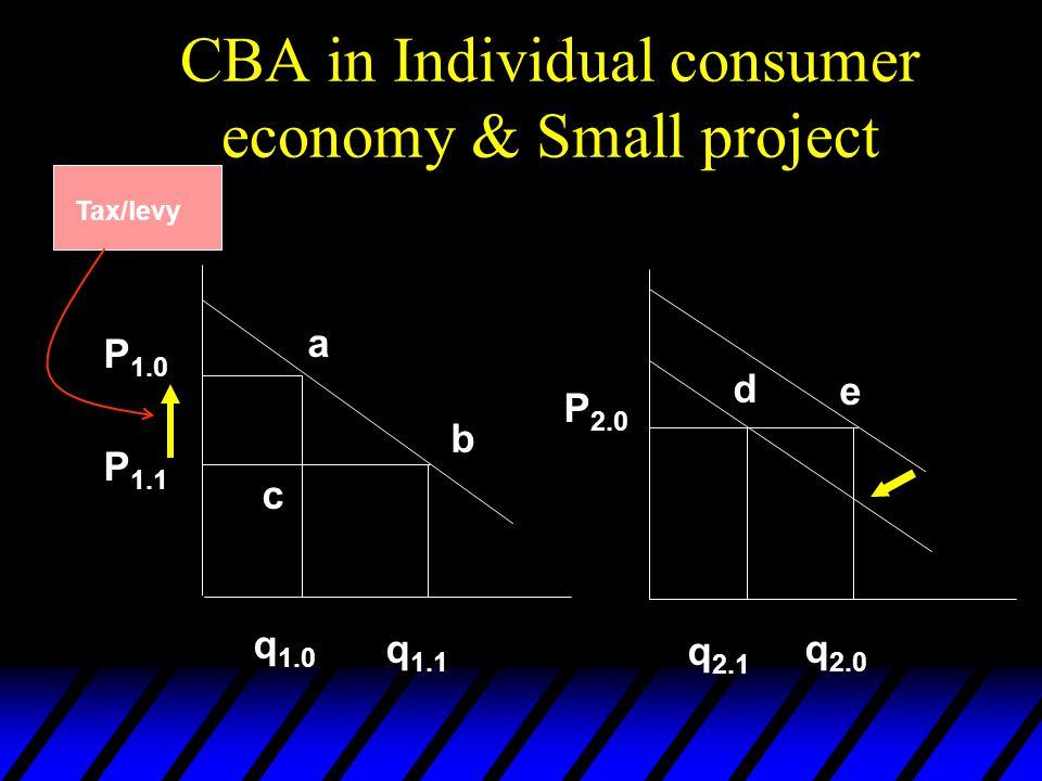 CBA in Individual consumer economy & Small project P 1.0 P 1.1 P 2.0 q 1.0 q 1.1 q 2.1 q 2.0 d e a b c Tax/levy